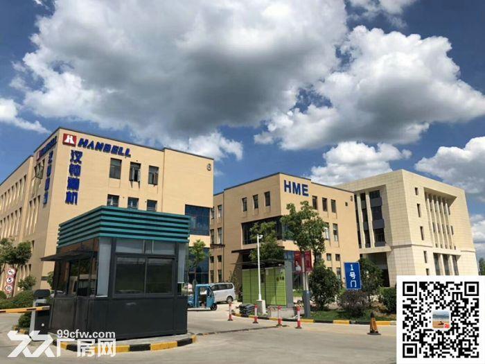 吴中重点项目独立产权高标准绿色新建厂房配套宿舍食堂高架路旁绝对好区位-图(8)