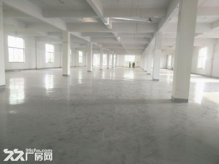 华庄1楼标准厂房1400平米出租,高度6米-图(2)