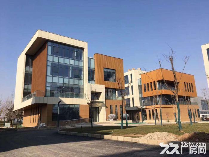 可租可售蔡家坡百万平米项目厂房,1000㎡起,购买可按揭-图(3)