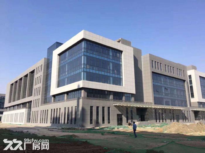 可租可售蔡家坡百万平米项目厂房,1000㎡起,购买可按揭-图(4)