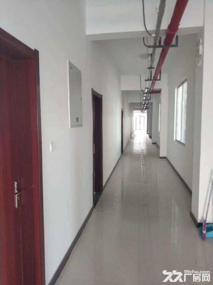 可租可售蔡家坡百万平米项目厂房,1000㎡起,购买可按揭-图(5)