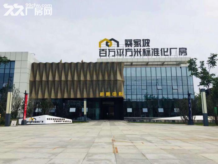 可租可售蔡家坡百万平米项目厂房,1000㎡起,购买可按揭-图(8)