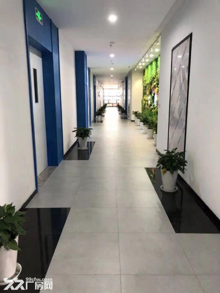(园区直招)上海化工园可分租.正规园区可办环评.可做精细化工.生物医药.化学等-图(3)