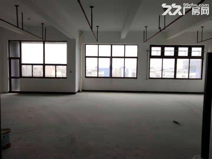 (园区直招)上海化工园可分租.正规园区可办环评.可做精细化工.生物医药.化学等-图(6)