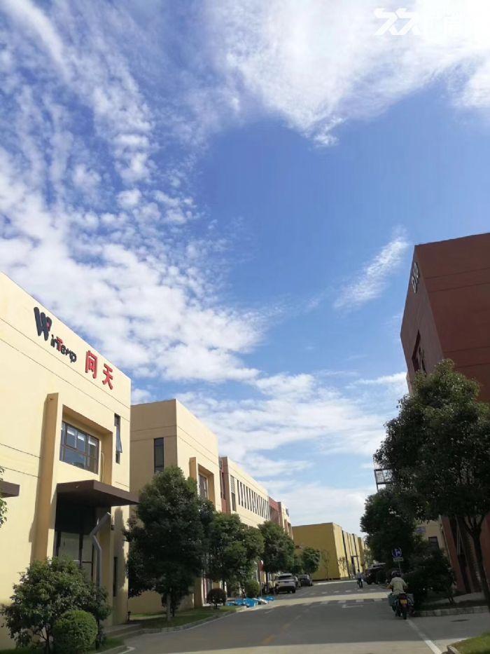 吴中重点项目独栋厂房高标标准绿色产业园区配套宿舍食堂高架路旁绝对好区位-图(8)
