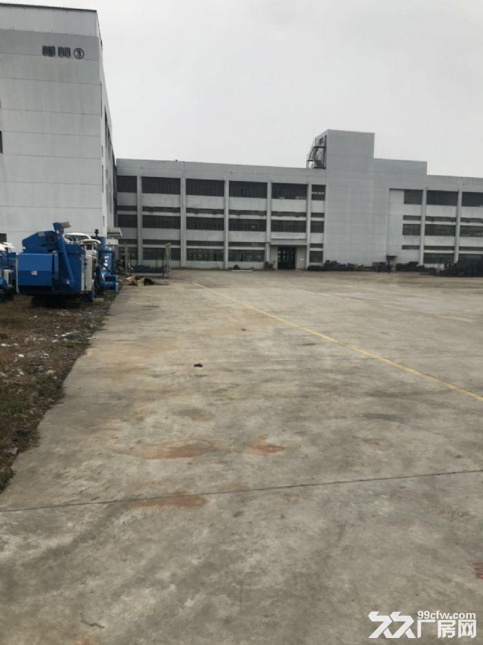 头门港土地123亩出售-图(2)