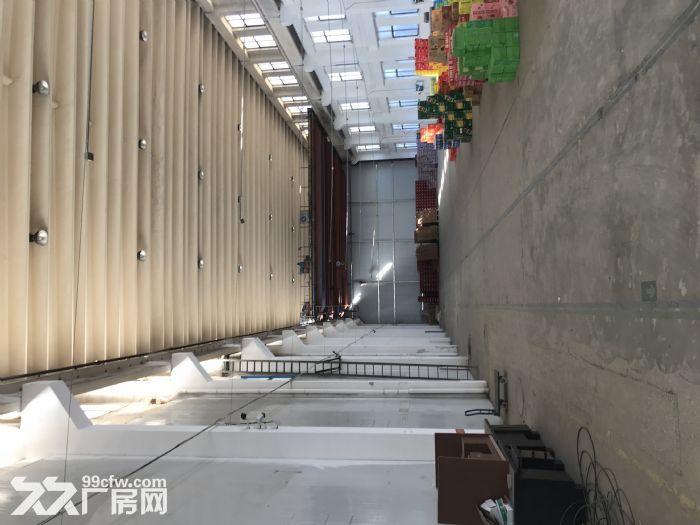 威海张村冰雪大世界院内仓库出租-图(2)