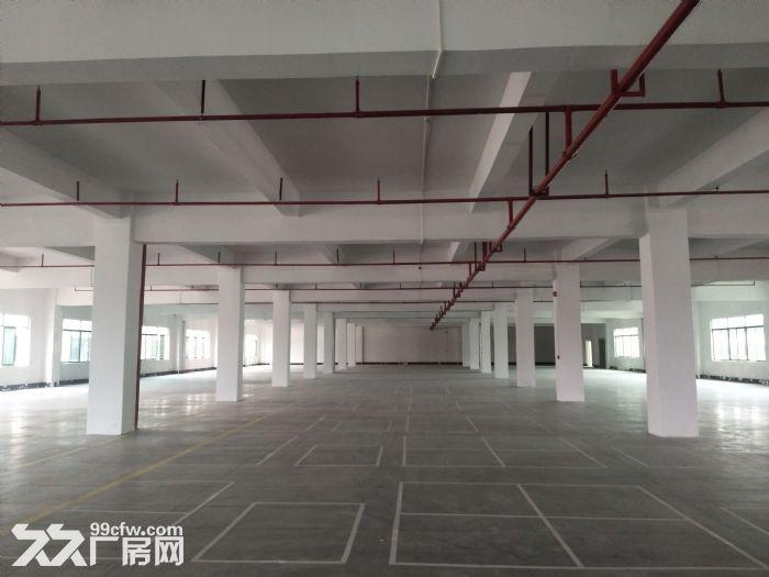 水口带卸货平台三层约19500平方标准厂房仓库招租可分可整租-图(5)