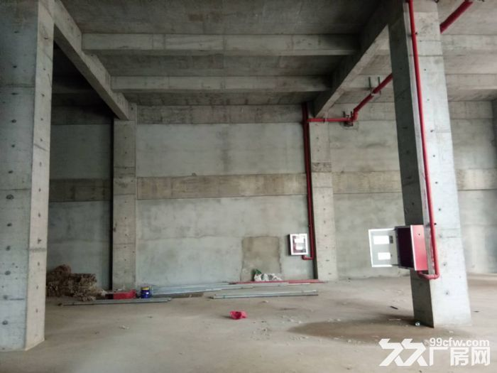栖霞区新港1200平独栋厂房出售,独立产权,可分割-图(3)
