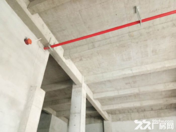 栖霞区新港1200平独栋厂房出售,独立产权,可分割-图(5)