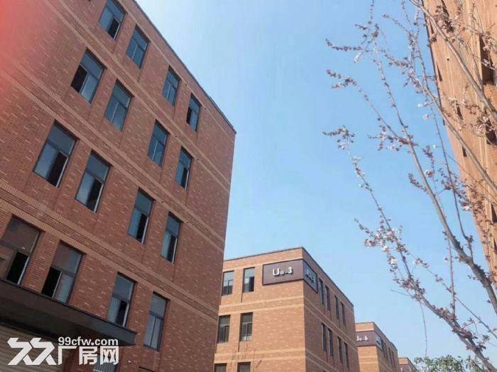 南京市经济开发区厂房500到1000平出租-图(2)