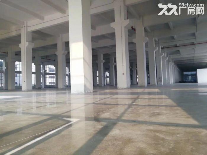 杏坛高新工业区47000全新厂房招租-图(1)