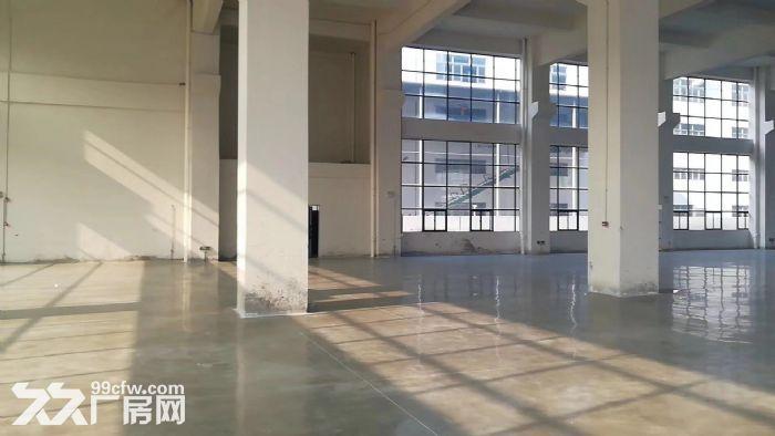 杏坛高新工业区47000全新厂房招租-图(4)