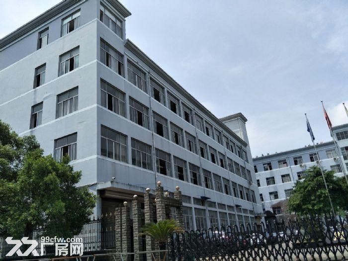 藤桥标准厂房1800平方,1000平方,800平方出租-图(1)