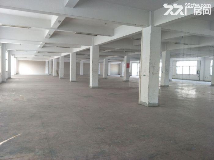 藤桥标准厂房1800平方,1000平方,800平方出租-图(2)