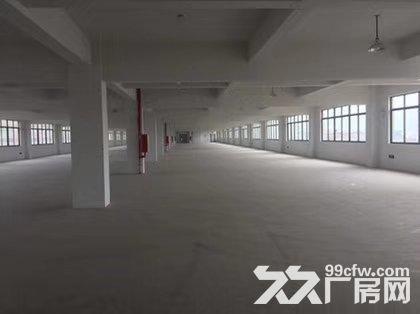 藤桥标准厂房1800平方,1000平方,800平方出租-图(5)