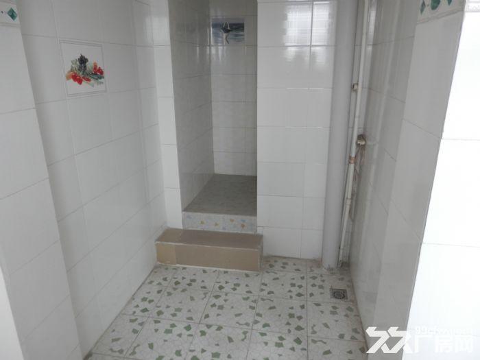 268平米整栋私人楼房低价出租(非中介)-图(6)