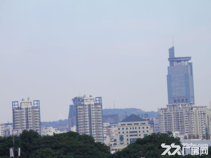 268平米整栋私人楼房低价出租(非中介)-图(7)