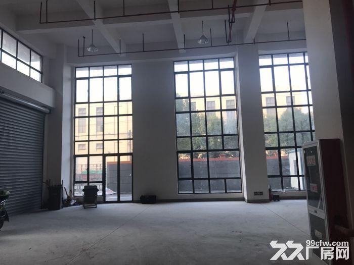 松江仪器仪表园区小面积500平全新厂房丙类形象好-图(3)