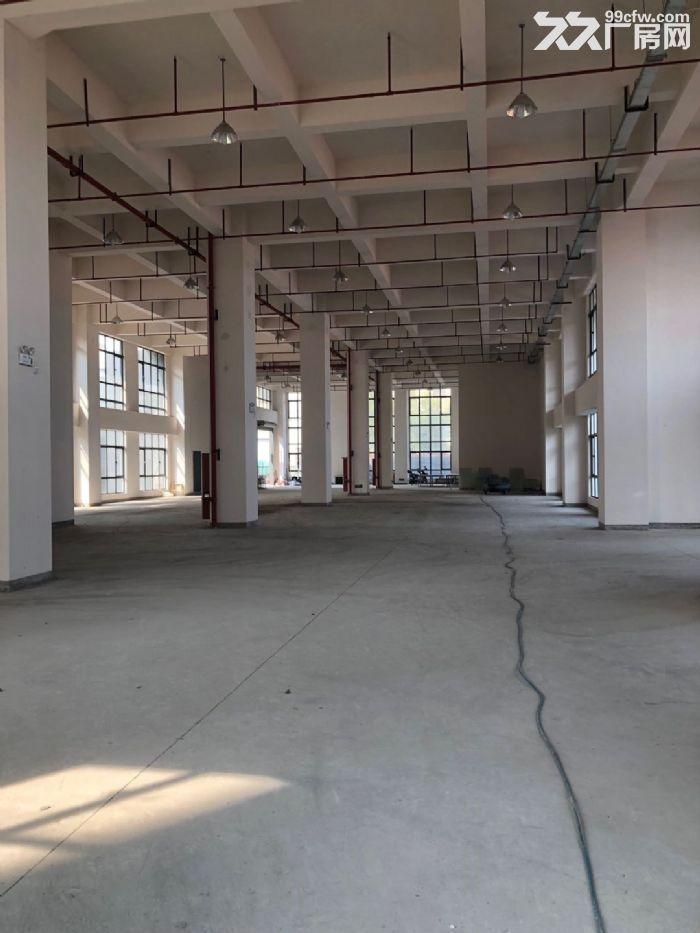 松江仪器仪表园区小面积500平全新厂房丙类形象好-图(6)