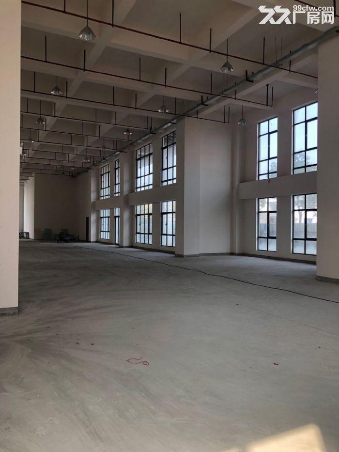 松江仪器仪表园区小面积500平全新厂房丙类形象好-图(7)
