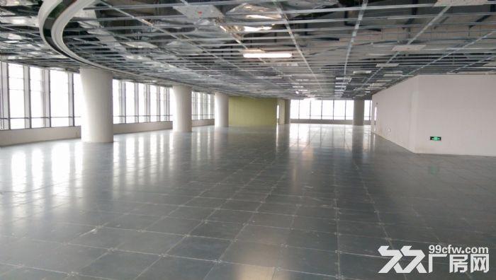 精装100平实验室设备齐全独栋5000平适合企业研发总部-图(4)