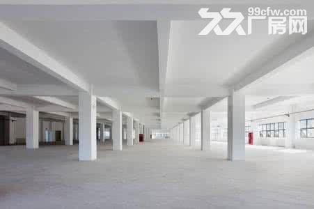 个人.江宁开发区二楼500−−−−3500平米仓库可分租-图(7)