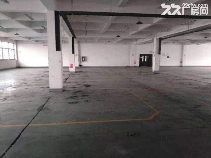 黄岛区自贸核心区5000平厂房出租-图(5)
