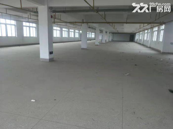汉阳黄金口500平米14元,可加工,配套宿舍食堂-图(1)
