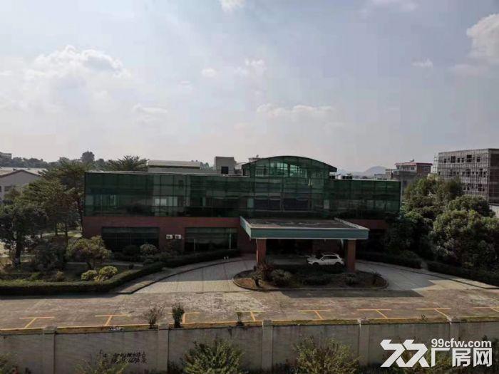惠州惠东原家私厂60000平方单层钢构厂房招租-图(1)