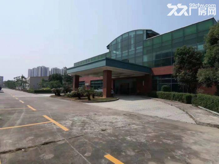惠州惠东原家私厂60000平方单层钢构厂房招租-图(2)