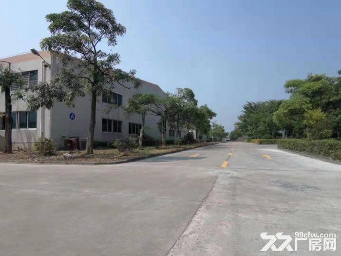 惠州惠东原家私厂60000平方单层钢构厂房招租-图(4)