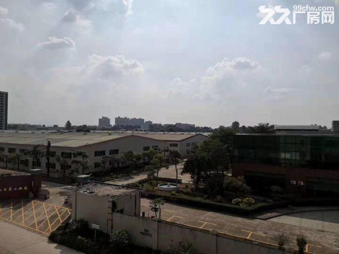 惠州惠东原家私厂60000平方单层钢构厂房招租-图(3)