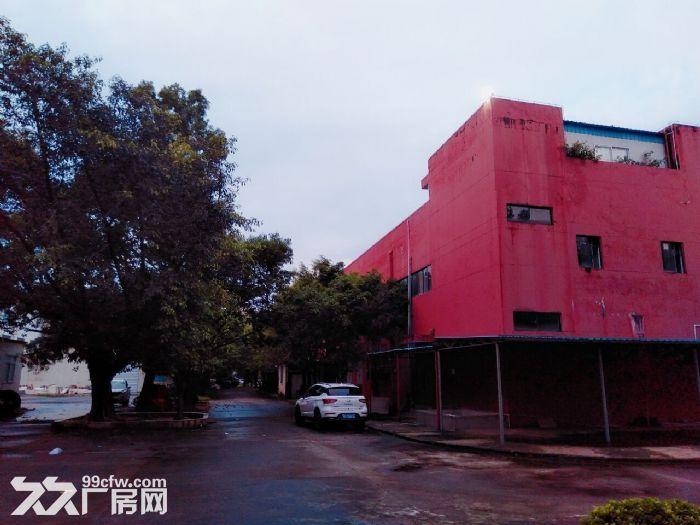 南屏科技园屏东一楼600−800−1350平方厂房出租-图(2)