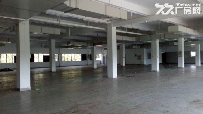 南屏科技园屏东一楼600−800−1350平方厂房出租-图(1)