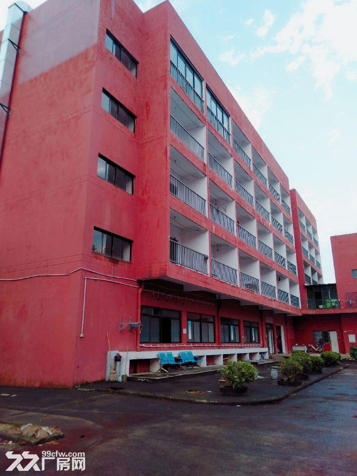 南屏科技园屏东一楼600−800−1350平方厂房出租-图(3)