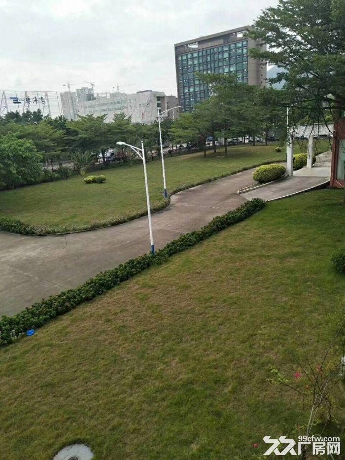 南屏科技园屏东一楼600−800−1350平方厂房出租-图(7)