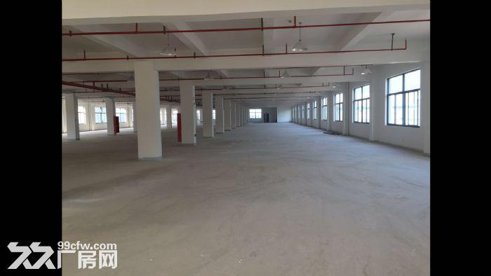 椒江标准厂房5700方出租-图(1)