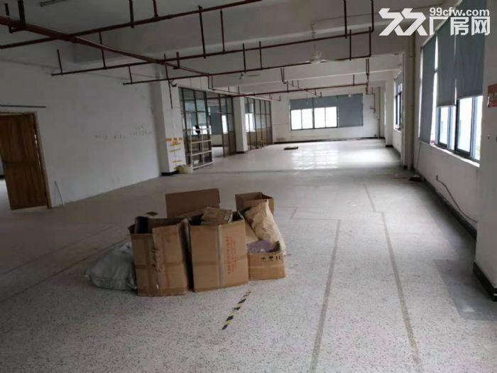北苑4楼2000平仓房出租可分租-图(2)