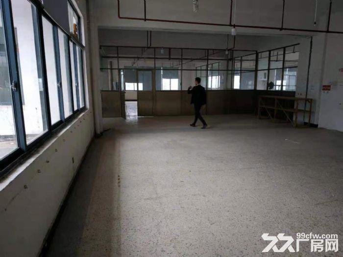 北苑4楼2000平仓房出租可分租-图(3)