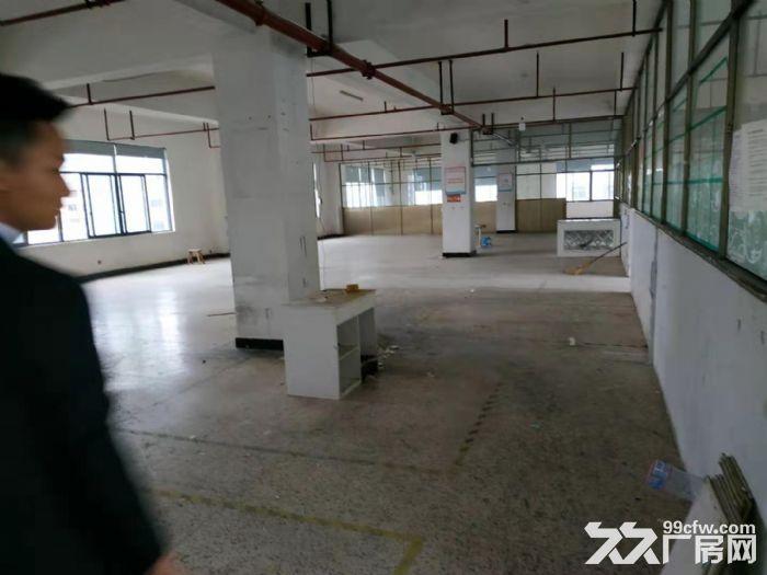 北苑4楼2000平仓房出租可分租-图(4)