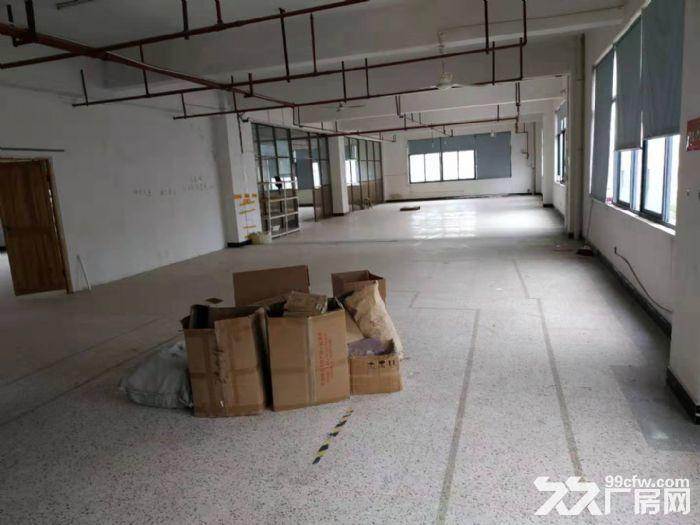 北苑3楼1100平厂房出租-图(2)