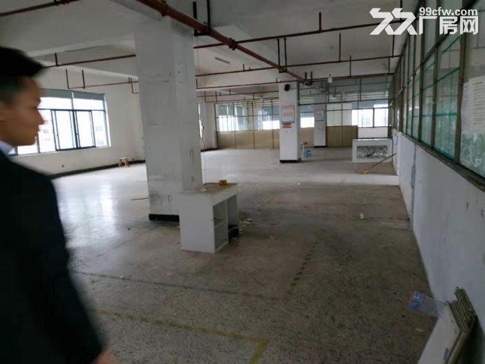 北苑3楼1100平厂房出租-图(3)