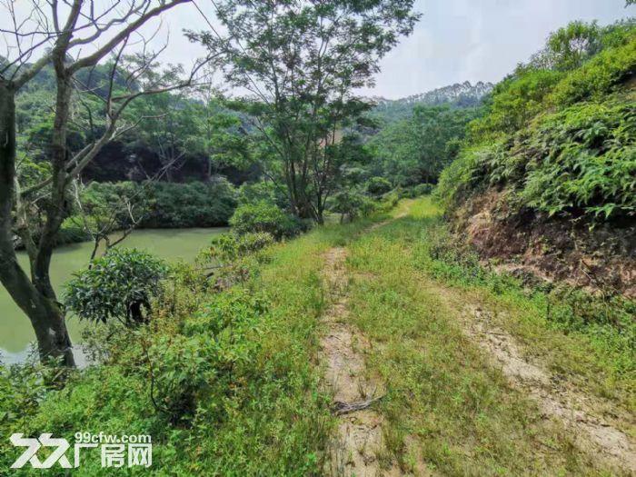 从化区太平镇银林400亩平山地果园鱼塘楼房农庄转让-图(7)