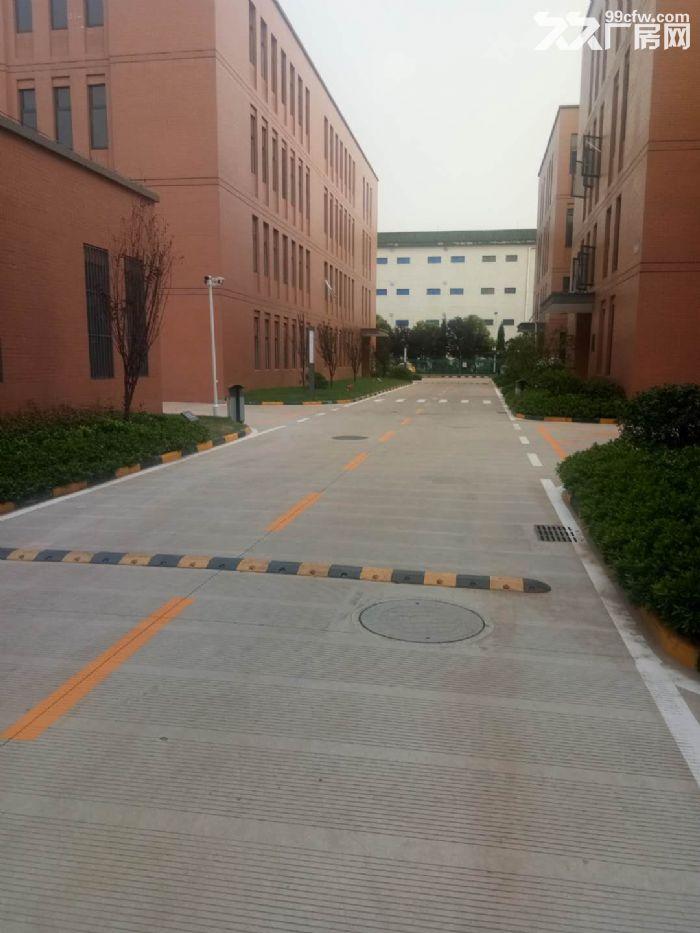 南京新港开发区可分割工业厂房独立产权现房-图(2)