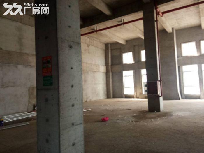 南京新港开发区可分割工业厂房独立产权现房-图(3)