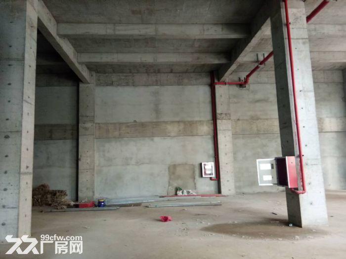 南京新港开发区可分割工业厂房独立产权现房-图(4)