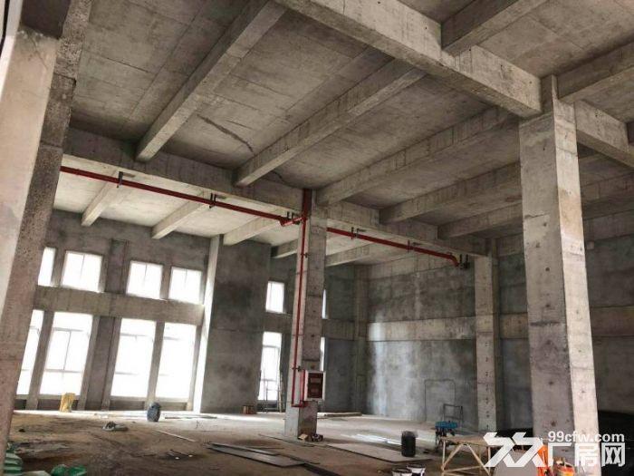 南京新港开发区可分割工业厂房独立产权现房-图(5)