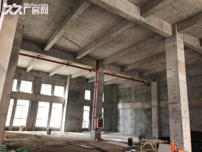 栖霞稀缺全新工业厂房,两证齐全,可按揭,现房出租出售-图(5)
