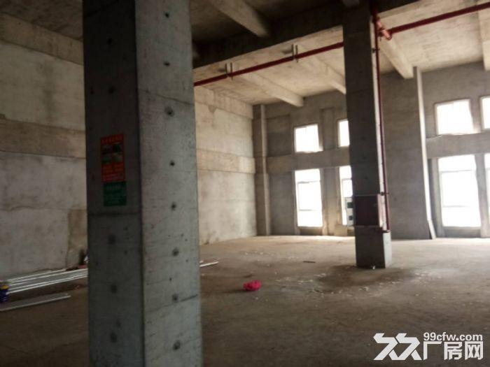 栖霞稀缺全新工业厂房,两证齐全,可按揭,现房出租出售-图(8)